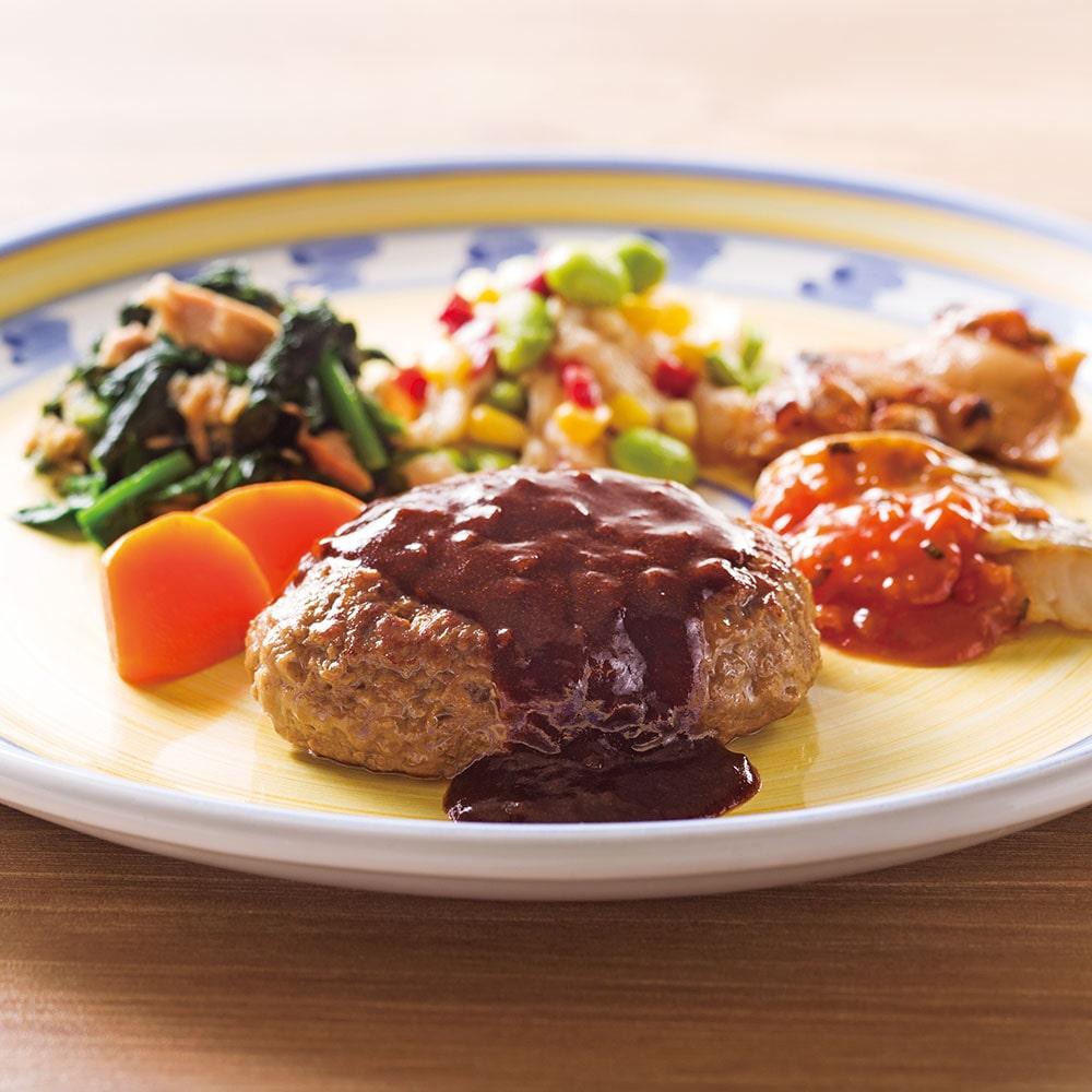 PD グレイビーハンバーグ&鱈のトマトソースプレート