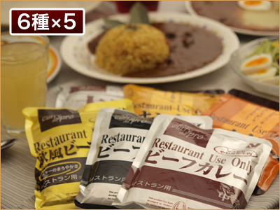 レストランユース カレーバラエティセット 30食セット(6種*各5入)