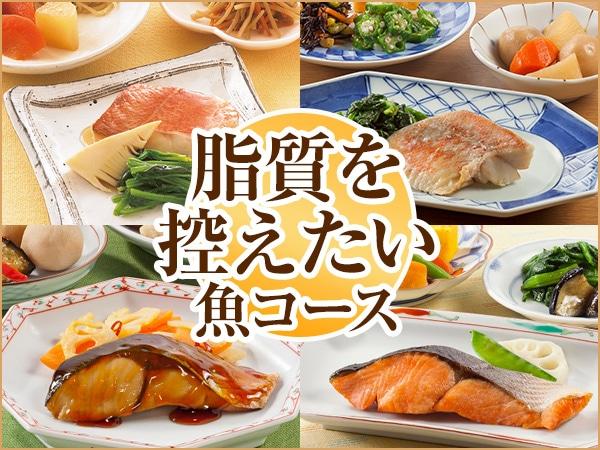 脂質魚コース 2019年春夏