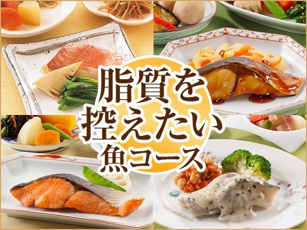 脂質お魚コース 2019年秋冬